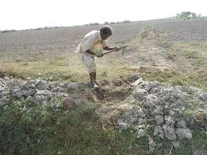 A farmer planting a tree