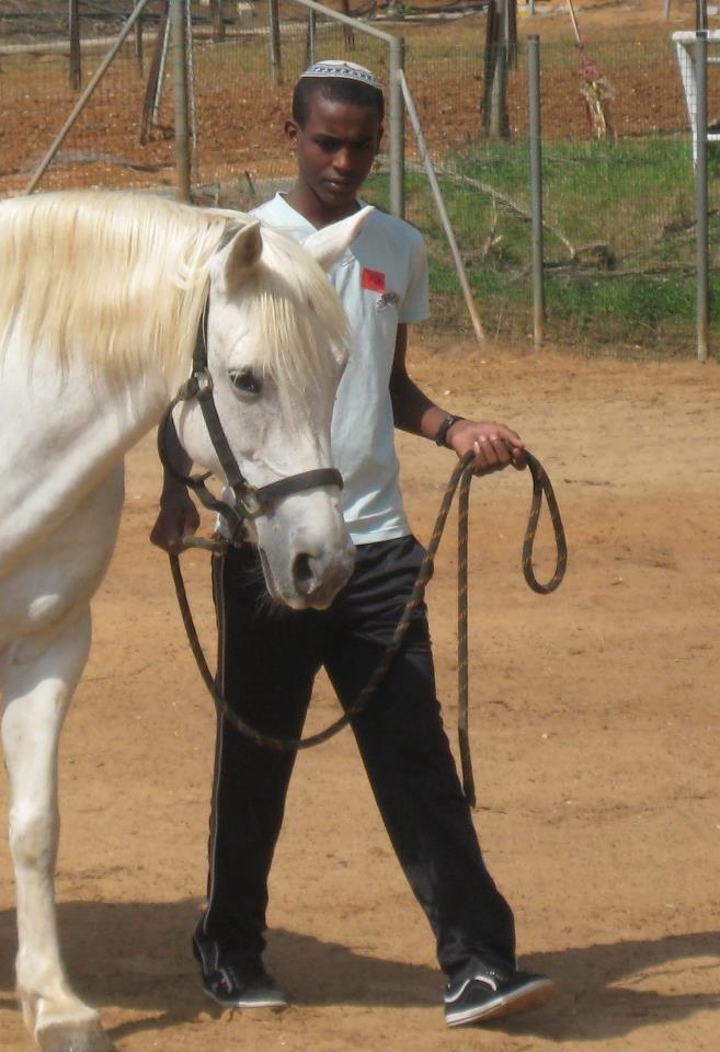 Horse riding lessons as an enrichment activity