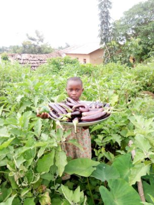 Child with Field Harvest