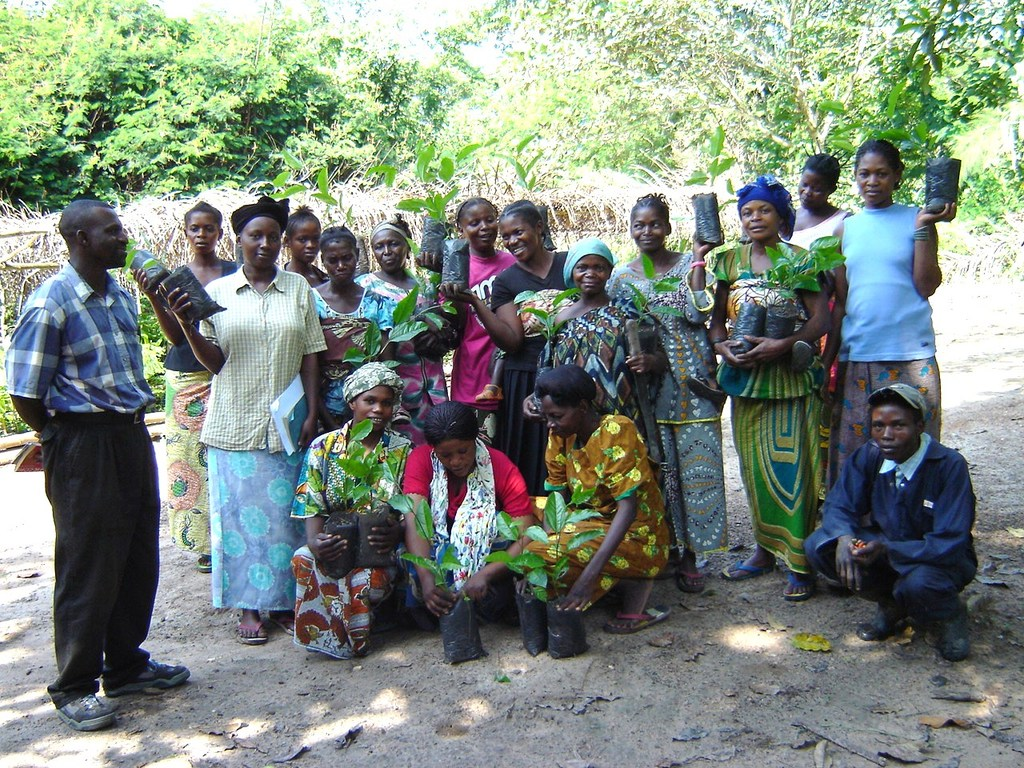 Indigenous fruit trees provided to local villagers