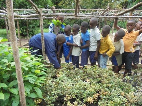 Children help nursery staff with seedlings.