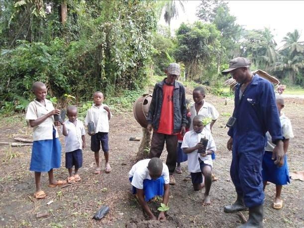 Students Planting Dacryodes  edulis Trees in Eboyo