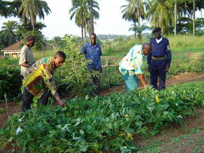 Farmers Learning Sustainable Practices
