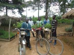 Transporting seedlings for reforestation