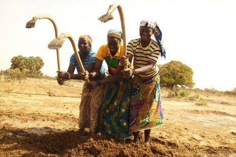 Mentors Kanda, Fosse & Dafani hoe a seed nursery