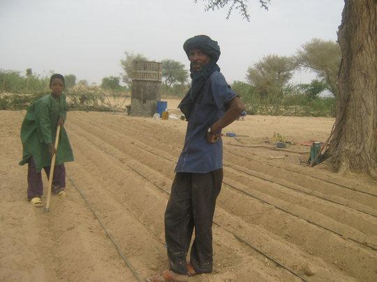 Garden preparation in Tchinteloust