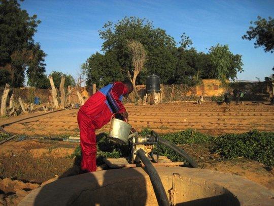 Tagantassou School Director working in garden