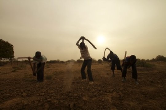 School children breaking the hard clay-soil chunks