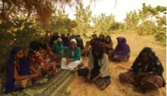 Women's garden meeting - Iferouane 2014