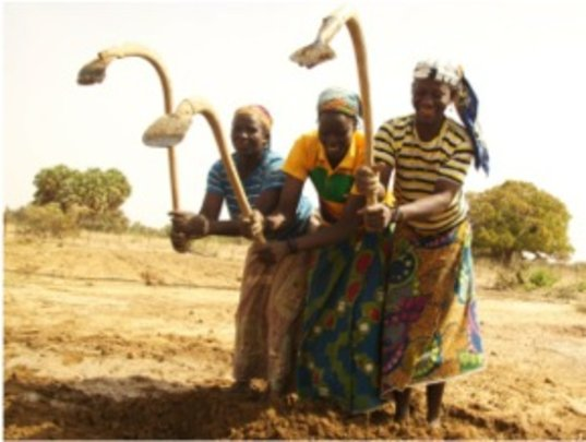 Tirboye mentors help plant the garden