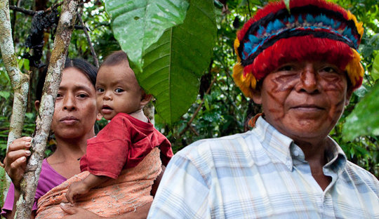 Protect the rainforest & indigenous rights in Peru