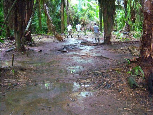 Assessing damage caused by oil exploration