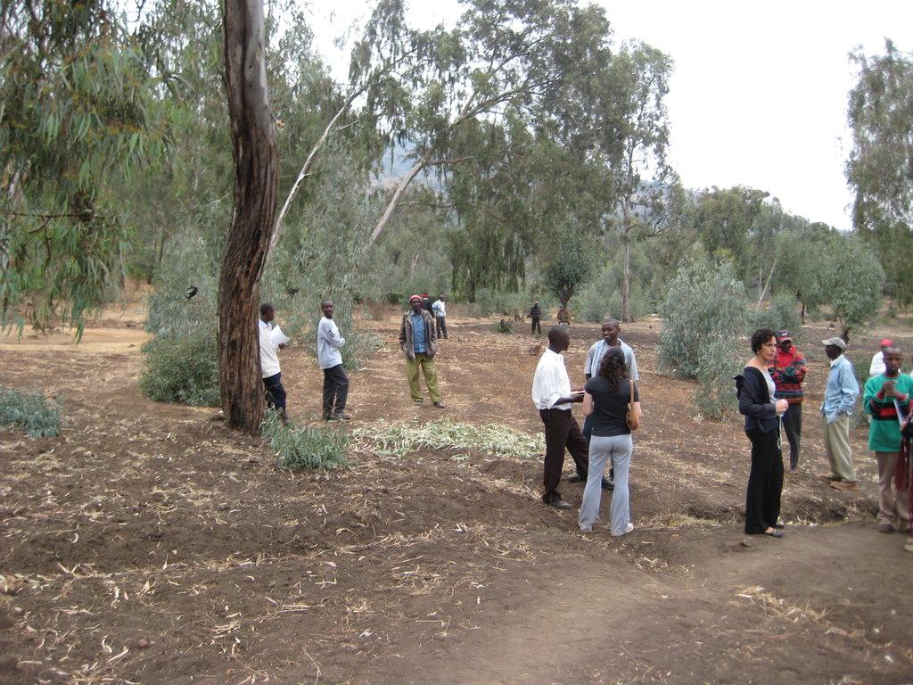 Jitegemee Green Education Center Land Plot