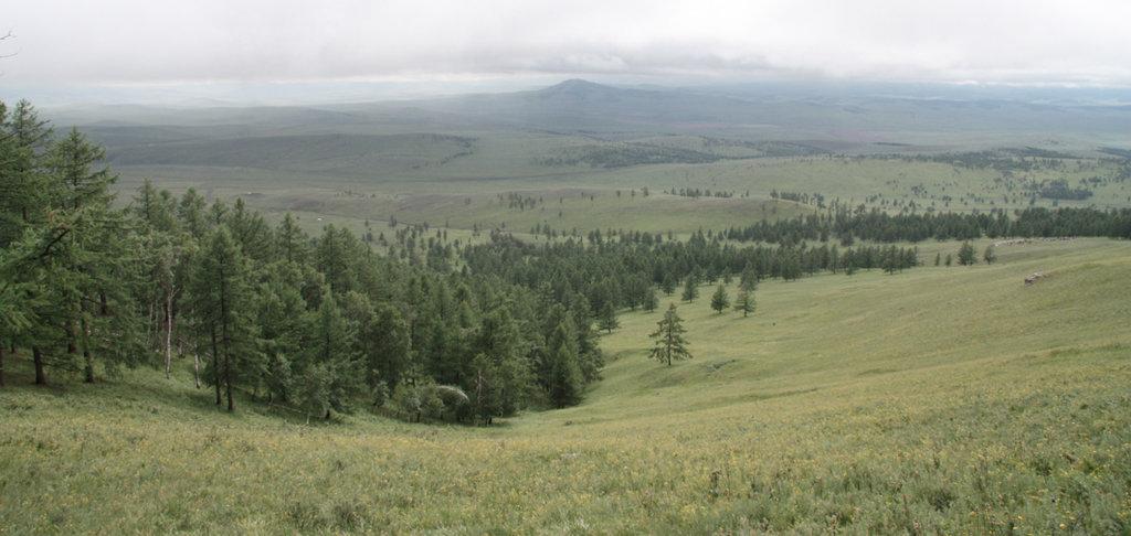 Birch Grove Nature Preserve