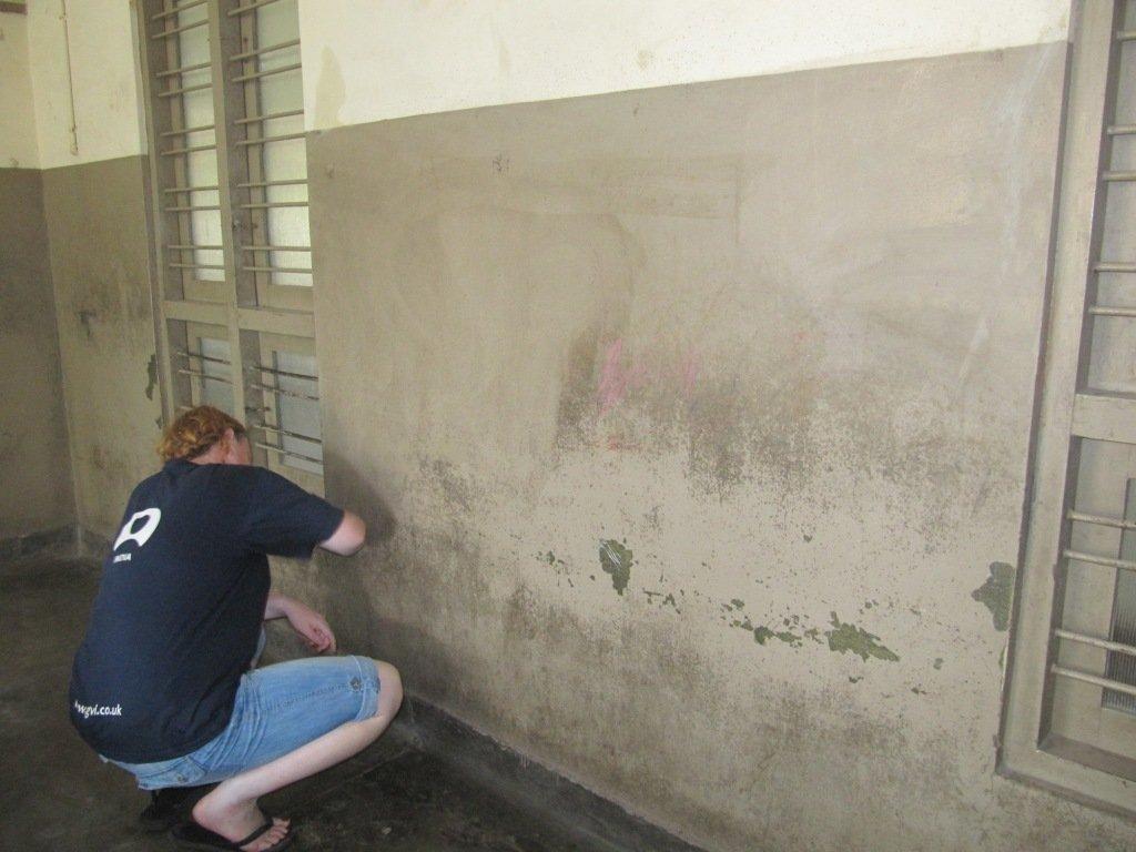 Preparing the walls