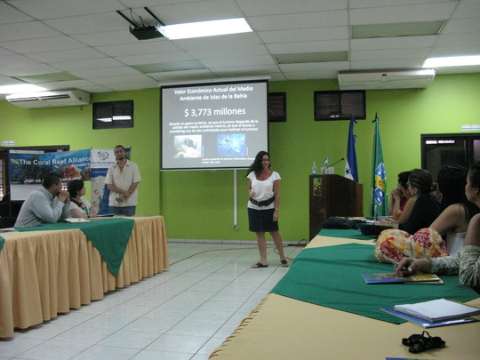 Jenny conducting a workshop for govt officials