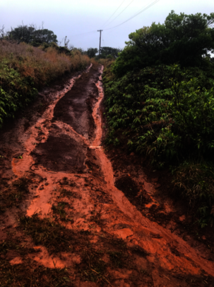 Stormwater on a dirt road in Maui (P: CORAL Staff)