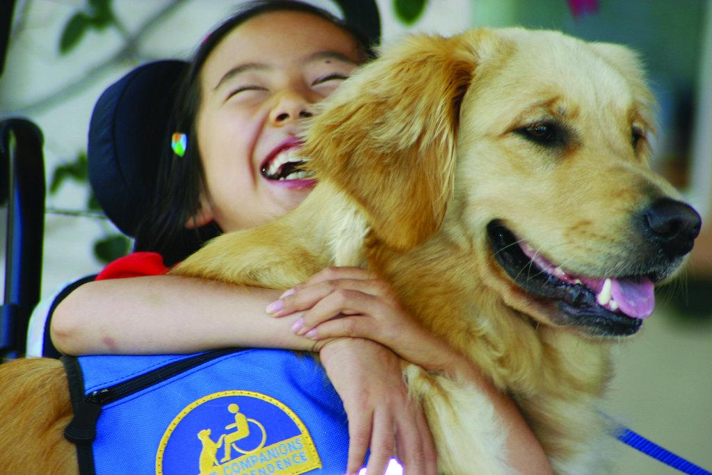 Canine Companions Assistance Dog Team Sponsorship