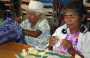 Bring Literacy to Indigenous Women - Oaxaca Mexico