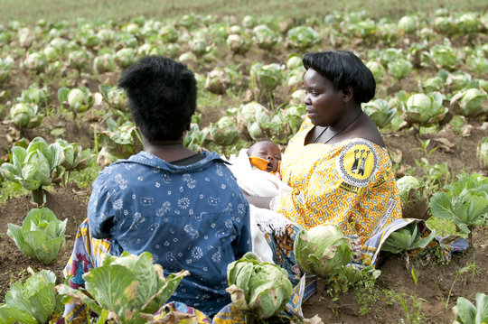Assistance for Sexual Violence Survivors in Congo