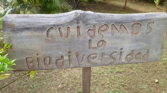 Handmade sign in the school