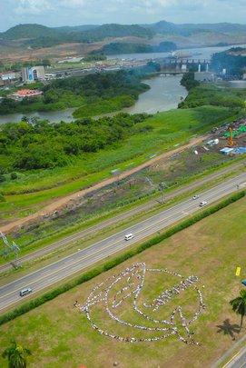 Panama Canal Human Whale Event