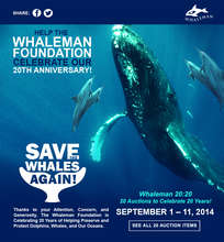 Whaleman 20th Anniversary eBay Charity Auction