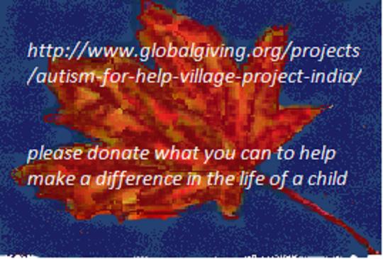 Bonus Day October 17, 2012 Autism for Help Village