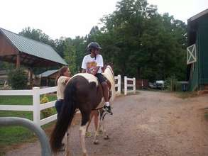 Hippotherapy includes riding backward