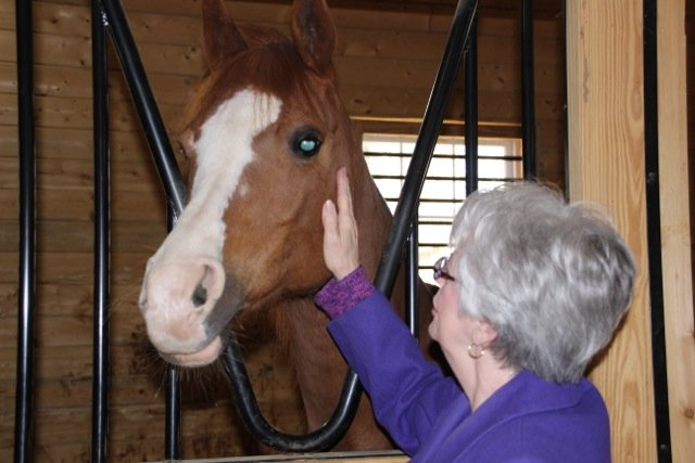 Glenna greeting Amazzing, a therapy horse