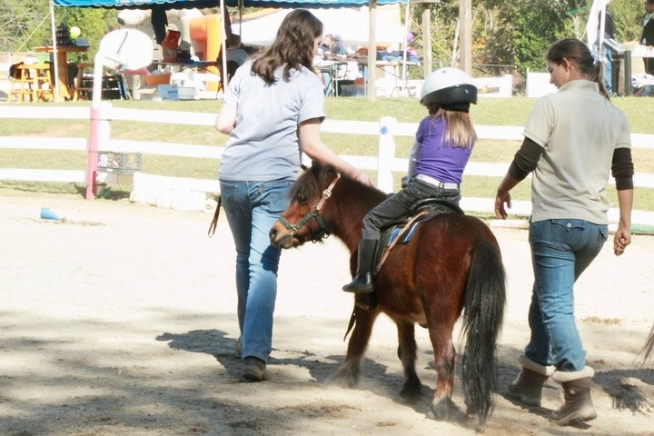Little horse, little rider