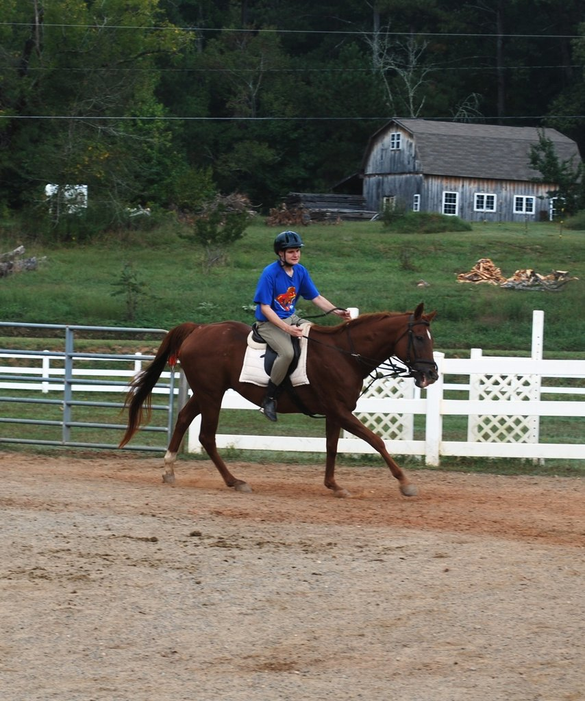 During a therapeutic riding session