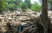 Provide Urgent Emergency Relief in Guatemala