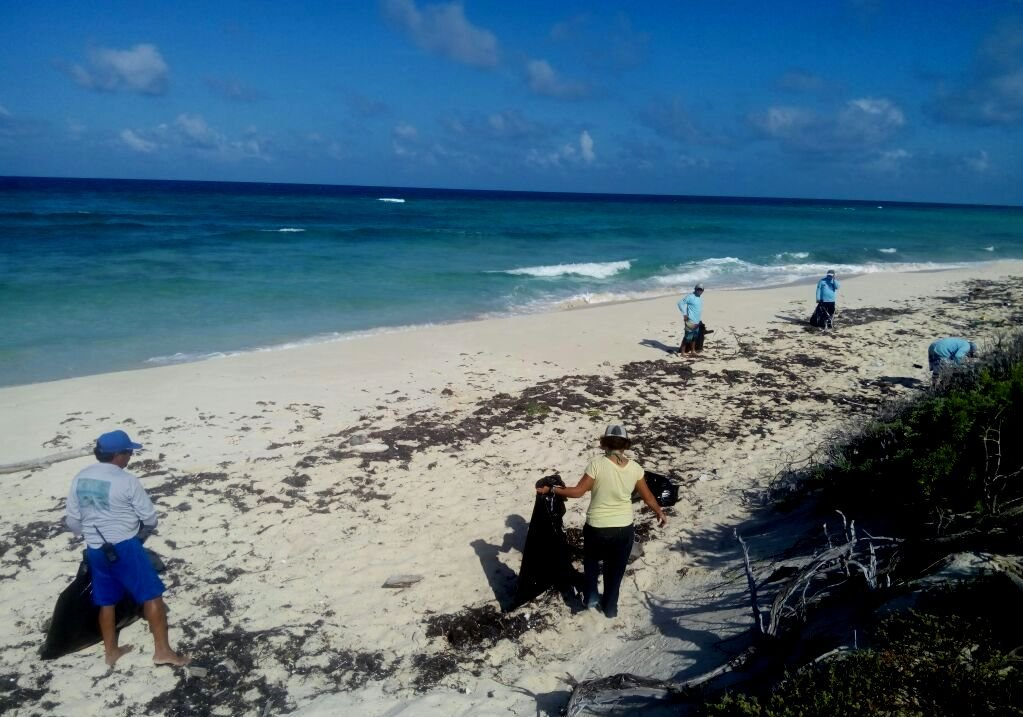 On a beach clean with the guides