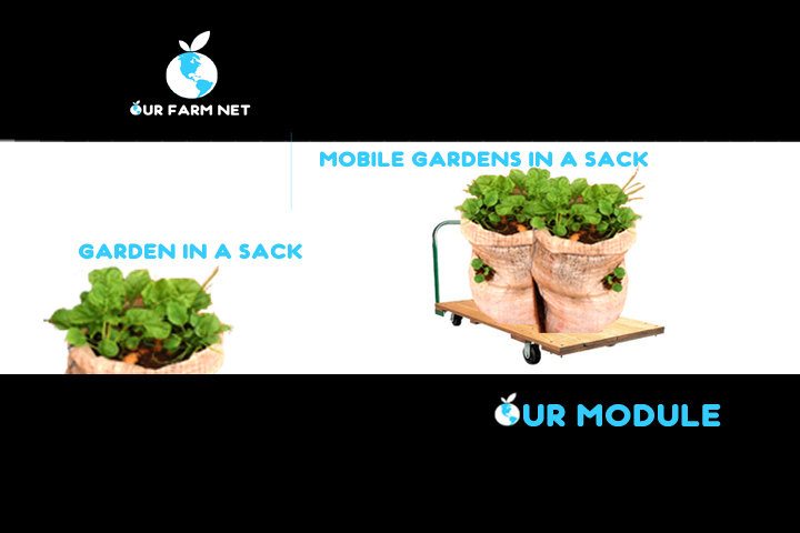 OUR Farm Net: A playful approach to Urban Farming