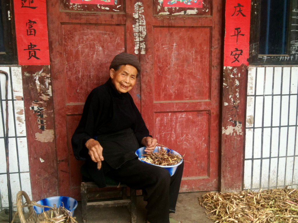 Train and link-up Chinese small-scale farmers