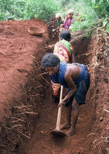 Building dignity through habitat development India