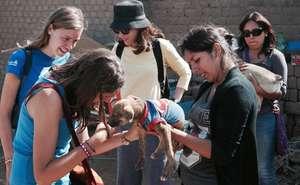 Local shelter outreach