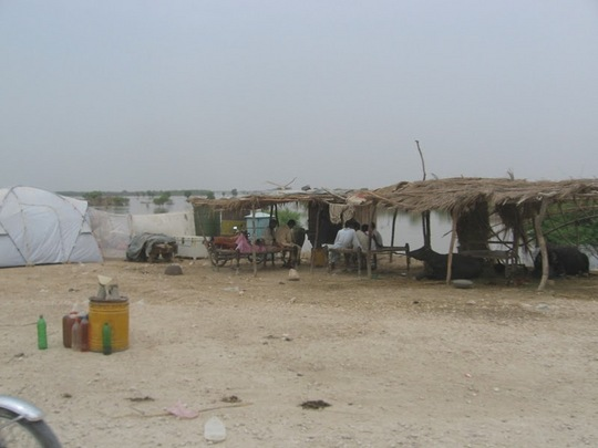 Basic living conditions in Interior Sindh