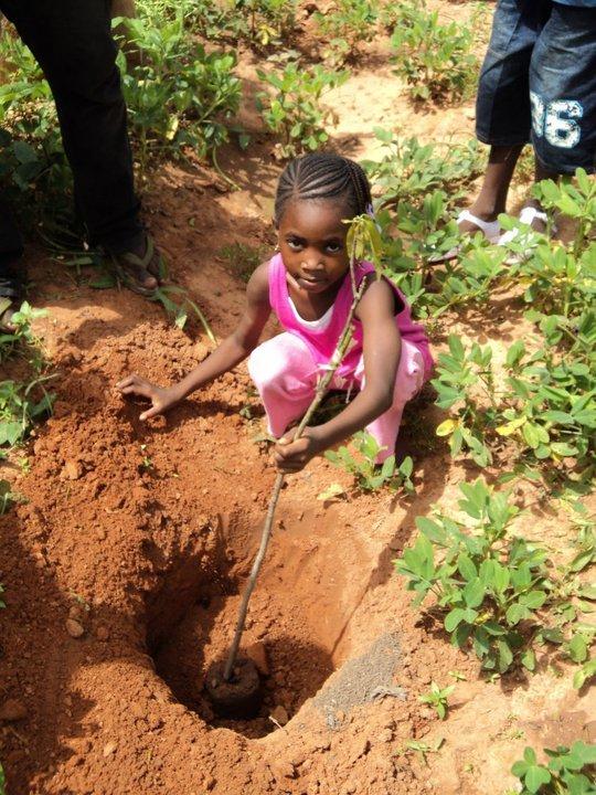 Koro planting a tree