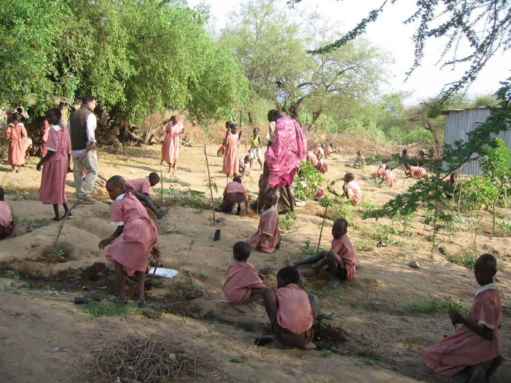 Schools benefit from reforestation
