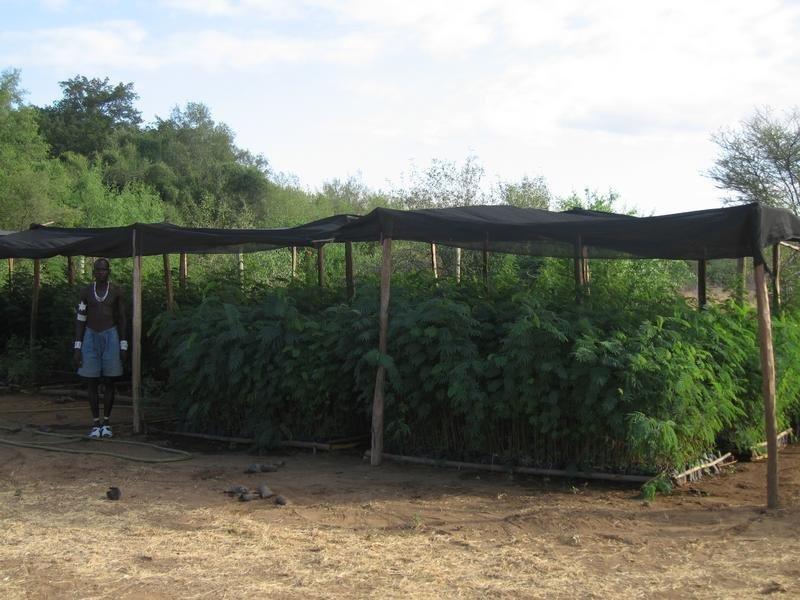 Reverse Deserts Through Community Transformation