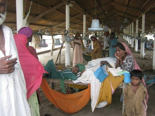 No Shelter available IDPs living in Poultry Farm
