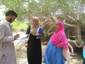 Survey in 300 women for food security