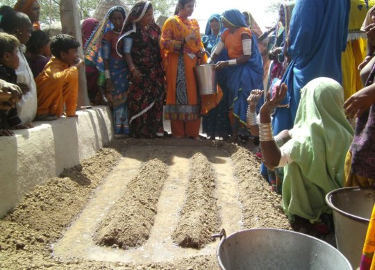 women sowing vegetable seeds