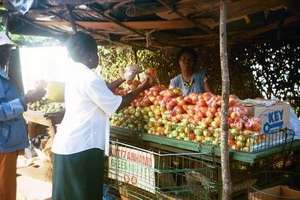 Irene Selling Vegetables