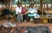 Self-Employ 50 Women in Rural Zimbabwe