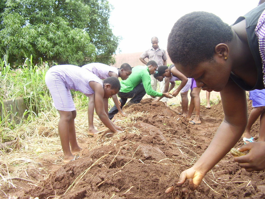 Train 2000 girls in agricultural skills in Imo