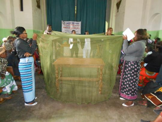 Education on Malaria Prevention