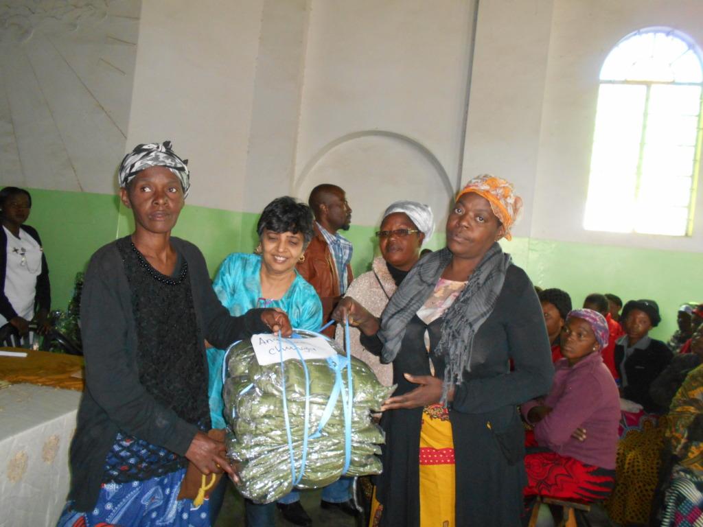 Community organizations receiving nets
